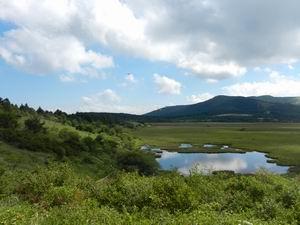 八島が原湿原