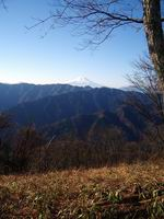 08.12.03s-sasaone.04.JPG