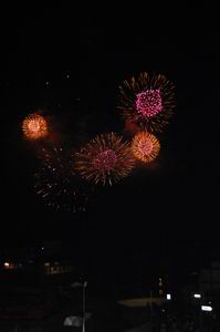 スイス建国記念日の花火